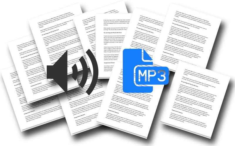 Audio PLR Articles