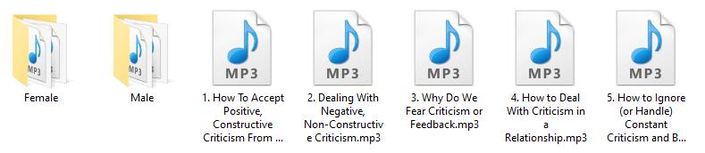 Criticism PLR Audio Articles
