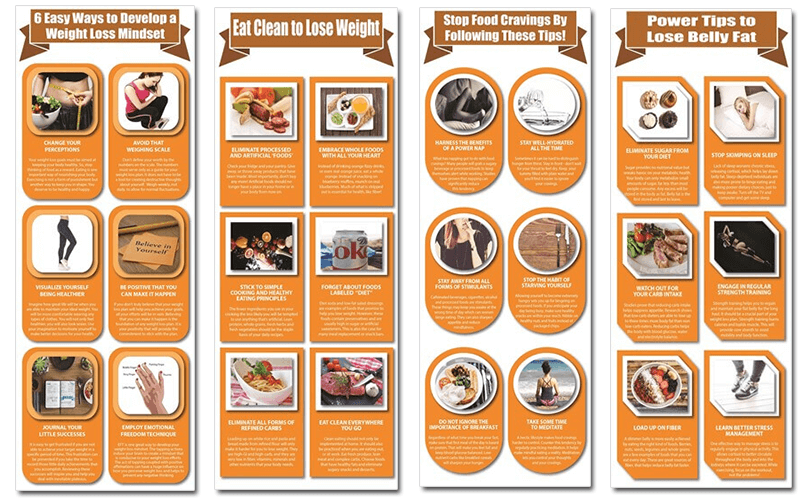 Weight Loss Mindset and Diet PLR Series Infographics