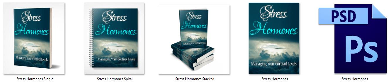 Stress Hormones PLR Report eCover Graphics