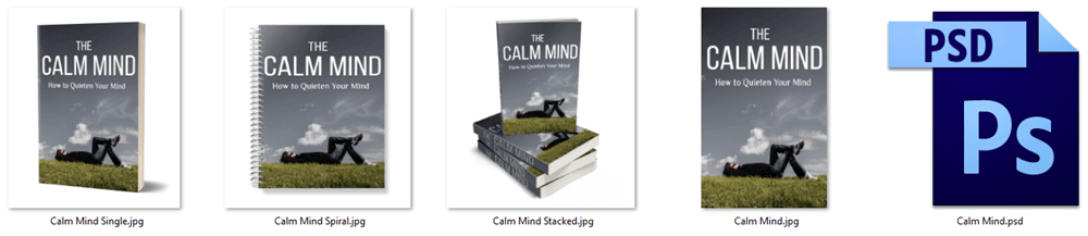 The Calm Mind PLR Report eCover Graphics