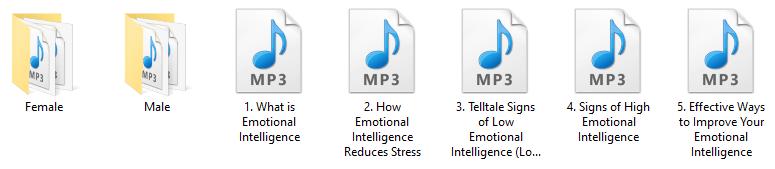 Emotional Intelligence PLR Audio Articles