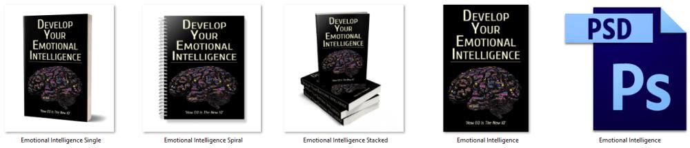 Emotional Intelligence PLR eCover Graphics
